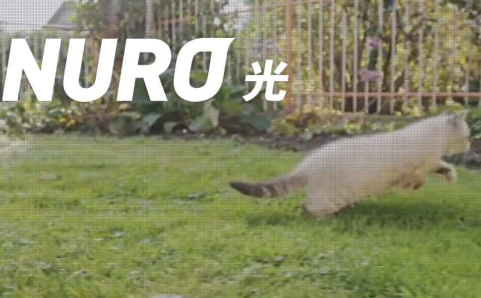 NURO Biz、ついに導入!